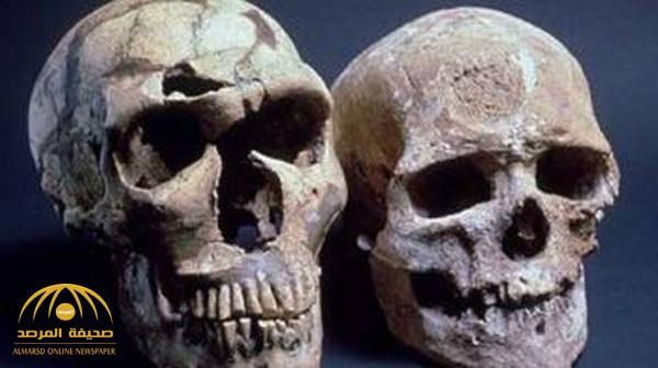 جمجمة طفل من إنسان بدائي تكشف حقائق عن التطور البشري!