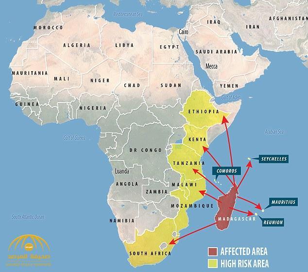"""ارتفاع ضحايا «الطاعون» في مدغشقر .. والصحة العالمية قد تعلنه كـ""""وباء عالمي"""" في غضون الأيام القادمة"""