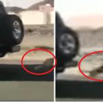 """بالفيديو : قائد سيارة يسحل """"كلباً"""" على الأسفلت ويعذبه حتى الموت .. وهذا هو مصيره !"""