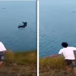 شاهد.. شاب يقذف كلبا داخل بحيرة مليئة بالتماسيح