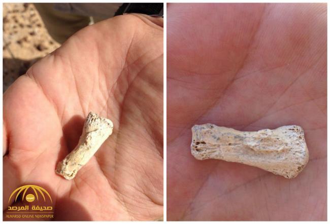 بالصور : العثور على بقايا إنسان عمره 85 ألف سنة شرق تيماء