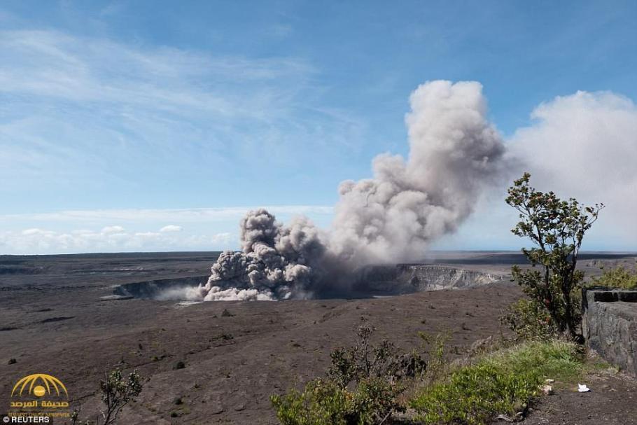 """""""هاواي"""" الحدائق 657244444444487-9.jp"""