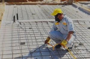 شركة مكافحة النمل الابيض بتبوك شركة مكافحة النمل الابيض بتبوك شركة مكافحة النمل الابيض بتبوك 0501515313 Anti termite company Tabuk