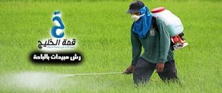 شركة رش مبيدات بالباحة 0532938901