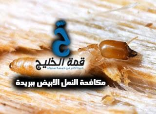 شركة مكافحة النمل الابيض ببريدة 0533942974