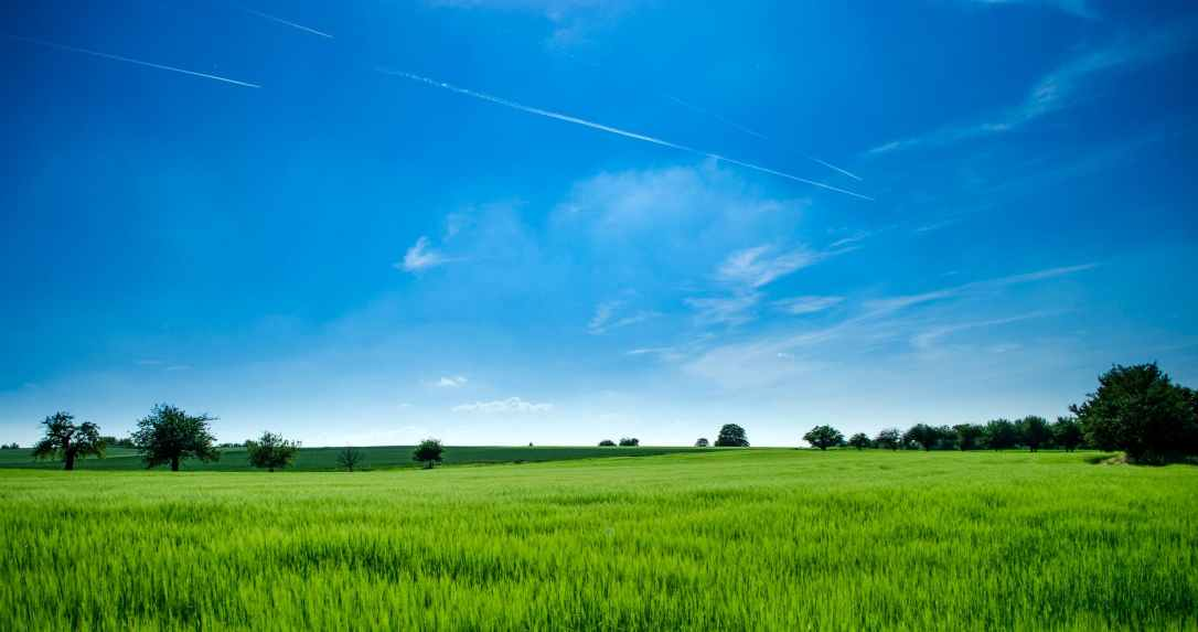 panoramic photography of green field