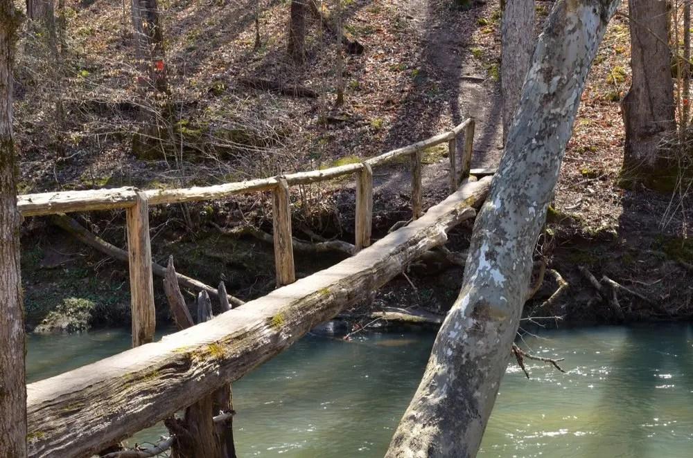 log bridge on Walls of Jericho Trail in Alabama