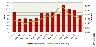 Sales dipped by 23 units during October, compared to last year in Calhoun County.