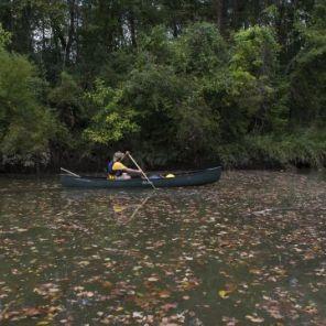 scenic river featured