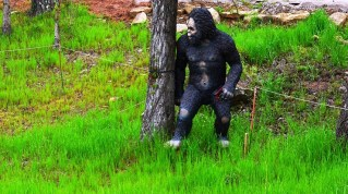 George Barber has added a number of whimsical touches to the aesthetics of Barber Motorsports Park, like Bigfoot hiding behind a tree. (Michael Tomberlin/Alabama NewsCenter)