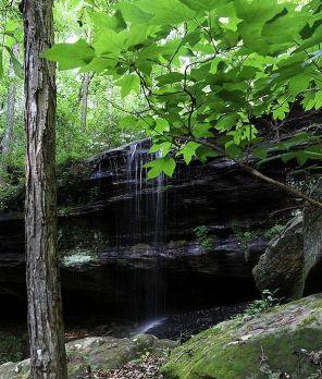Northeast Falls (Photo courtesy of Jessica Rice)