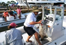 The annual Alabama Deep Sea Fishing Rodeo on Dauphin Island draws about 75,000 people, and anglers reel in an impressive variety of species. (Mike Kittrell/Alabama NewsCenter)