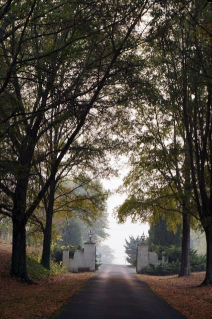 Gated driveway of the Andrew Ross Home, Fort Payne. (Erin Harney/Alabama NewsCenter)