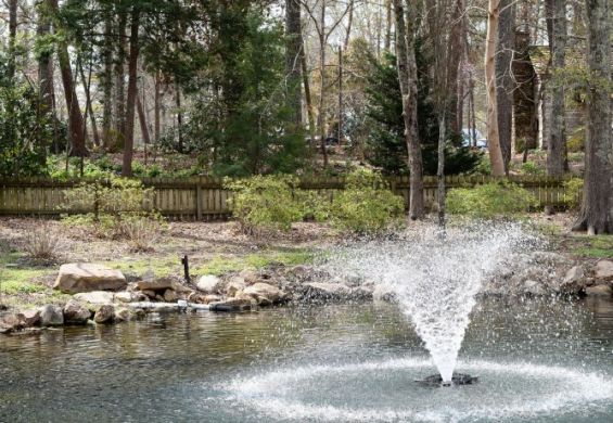 Relax while enjoying the beauty of nature. (Donna Cope / Alabama NewsCenter)