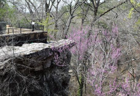 Enjoy lush, colorful landscapes. (Donna Cope / Alabama NewsCenter)