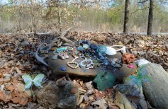 People leave stones and other trinkets on various parts of the wall. (Anne Kristoff / Alabama NewsCenter)