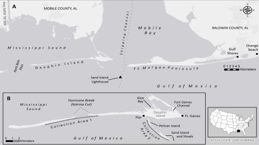 """Map of Dauphin Island and the Sand/Pelican Island Complex. (Courtesy of Palaeodiversity) """"The Gulf of Mexico is home to more than 15,420 species; from the coastal estuaries to the deep-sea floor, the biodiversity of the Gulf is astonishing."""" (National Wildlife Federation)"""