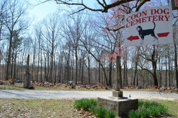 The hilly, wooded cemetery sits on top of a mountain. (Anne Kristoff / Alabama NewsCenter)
