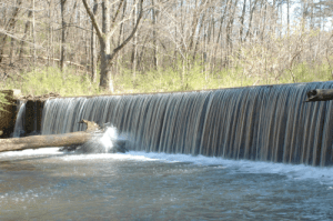 This dam's removal from Turkey Creek permitted the rare vermilion darter to expand its habitat upstream. (Zac Napier)