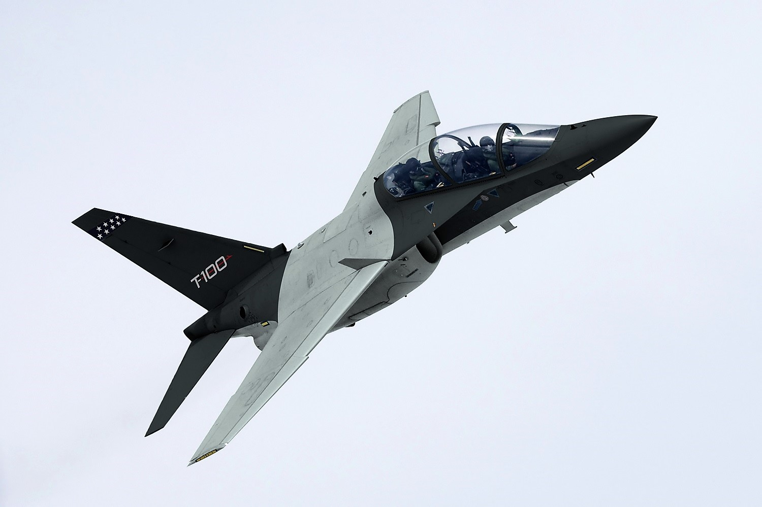 Leonardo's T-100 trainer is already in use by air forces around the world. (Leonardo)
