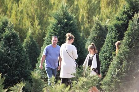 The McDaniel family (Robin, center, and Olivia, right) picks out a tree. (Robert DeWitt / Alabama NewsCenter)