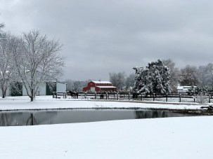 Snow covered much of central Alabama, offering a new perspective on familiar sights like Odenville. (Dennis Washington / Alabama NewsCenter)