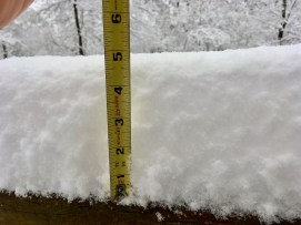 Bluff Park got a good measure of snow. (Phil Free / Alabama NewsCenter)