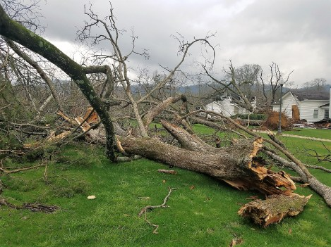Storm damage in east Alabama from the March 19, 2018 storms was extensive. (Brittany Faush / Alabama NewsCenter)
