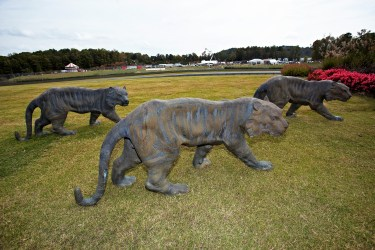 Tigers roam the grounds. Statues are a common sight throughout the park. (Barber Motorsports Park and Museum)
