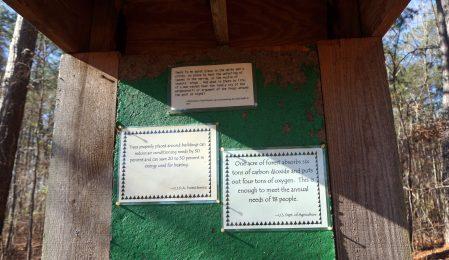 Louise Kreher Forest Ecology Preserve. (Erin Harney/Alabama NewsCenter)