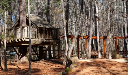 Nature playground at Louise Kreher Forest Ecology Preserve. (Erin Harney/Alabama NewsCenter)