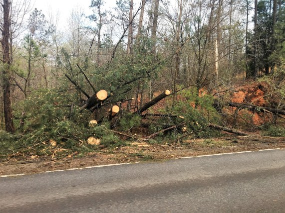 Storm damage from the March 19, 2018 storms on Alabama 77 in Southside. (Lee Kilcoyne)