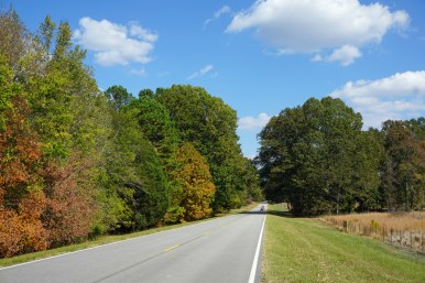 Natchez Trace Parkway stretches through three states, including Alabama. (Erin Harney / Alabama NewsCenter)
