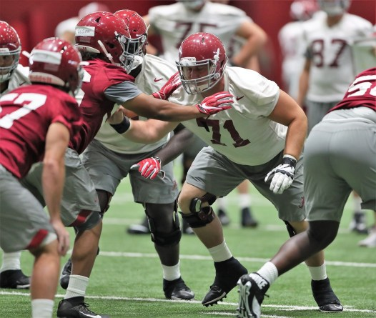 Alabama offensive lineman Ross Pierschbacher (71) is on the watch lists for both the Outland Trophy and the Rimington Trophy this season. (Kent Gidley/University of Alabama Athletics)