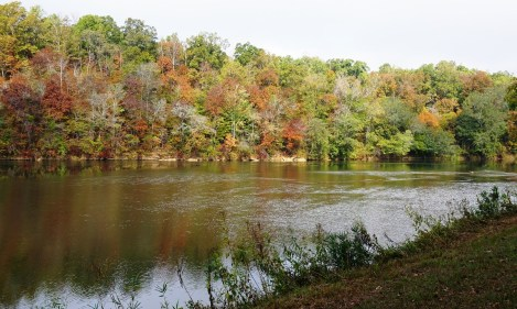 Fall foliage along the Tallapoosa River, Horseshoe Bend National Military Park. (Alabama NewsCenter)