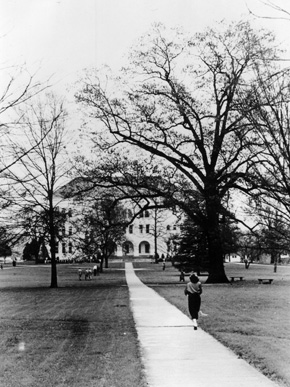"A student walks toward the ""Old Main"" and the Sherman Oak (to the right of the building) on the East Lake campus of Howard College (now Samford University) in the 1950s. The college relocated to the Birmingham suburb of East Lake in 1887 and then to the Shades Valley community near Birmingham in 1957. (From Encyclopedia of Alabama, courtesy of Samford University Special Collections)"
