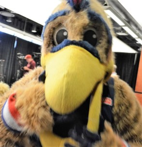 Pierre the Pelican, mascot for the New Orleans Pelicans NBA team, was in Birmingham today to celebrate the Magic City as the new home of the Pelicans' G League team. (Michael Tomberlin / Alabama NewsCenter)