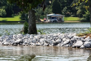 School Bus Island, a short distance from the shore of Logan Martin Lake, is now protected for future generations to enjoy. (Meg McKinney/Shorelines)