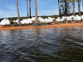 More than 300 volunteers pitched in to remove trash in and around Lake Martin for this year's Renew Our Rivers cleanup. (contributed)