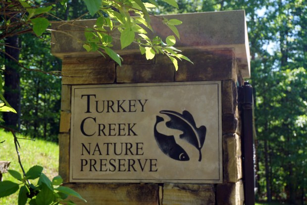 Turkey Creek Nature Preserve. (Erin Harney / Alabama NewsCenter)