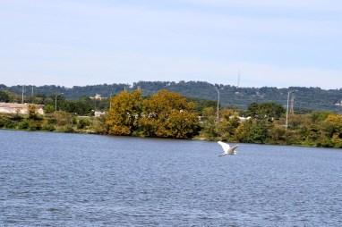 GadRock is built on the banks of Lake Gadsden. (Justin Averette/Shorelines)