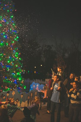 Start a new holiday tradition at ZooLight Safari. (The Birmingham Zoo)