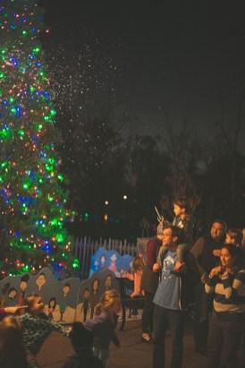 Start a new holiday tradition at ZooLight Safari. (The Birmingham Zoo)