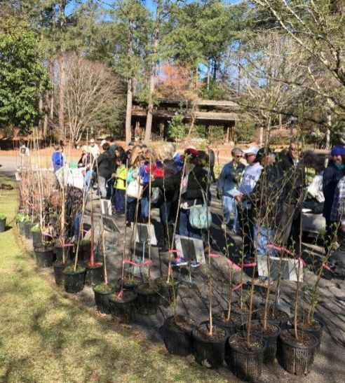 The promise of young seedlings draws hundreds of residents. (Alabama Power)