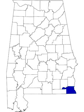 Houston County is 59th in size among Alabama counties and is located in the southeastern corner of the state. (From Encyclopedia of Alabama, courtesy of University of Alabama Cartographic Research Laboratory)