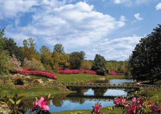 See 65 acres of lovely gardens. (Bellingrath Gardens)