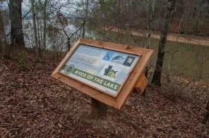 Interpretive signs line the new 1.45-mile loop trail along Logan Martin Lake. (Billy Brown/Shorelines)