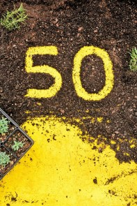 The Birmingham Botanical Gardens is marking 50 years of its Spring Plant Sale this weekend. (Birmingham Botanical Gardens)