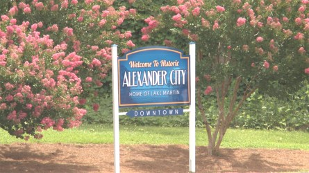 More signs like this are planned for Highway 280 to encourage shoppers to look downtown. (Dennis Washington / Alabama NewsCenter)
