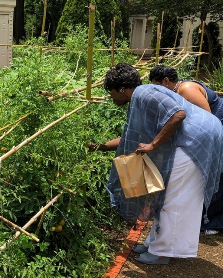 After your meal, take a tour of the grounds, pick fresh produce from the garden or enjoy games. (Chanda Temple)